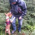 Akani beim Trailen im Wald