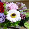 ガーベラは石鹸の香りがする「香りの花」です