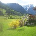 Blick ins Obersulzbachtal von Ihrem Garten aus