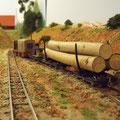 Selbstverständlich gibt es auch Holztransporte bei meiner Feldbahn
