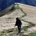 Abstieg vom Monte Generoso