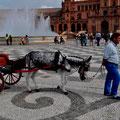 """Unterwegs auf dem """"Plaza de España"""" in Sevilla"""