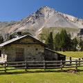 Wanderung Ofenpass - Alp da Munt - Lü