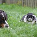Geena und Cleo