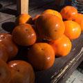 収穫した平柿
