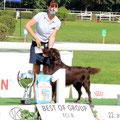 Sieger der Gruppe 8 (Wasser, Apportier und Stöberhunde)