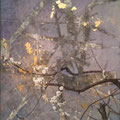 2010 F50号 梅 パネルに和紙、岩絵具、墨、金箔、アクリル絵具