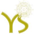 """Logoentwicklung/Lebendiger Schlüssel für Buchtitel """"YS"""" für Elisabeth Karsten © Susanne Barth"""