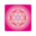 """Lebendiges Mandala """"Leidenschaft"""" in Privaträumen, Echtfoto hinter Acylglas, 40 x 40 cm. © Susanne Barth"""