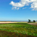 die reizvolle Landschaft bei Maasholm