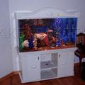 Декоративный пресноводный аквариум с цихлидами
