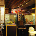Пресноводные аквариумы с цихлидами в зале ресторана
