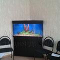 Пресноводный декоративный аквариум
