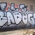BAD OGS