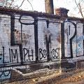 Limph