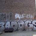 Spair BAD OGS