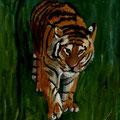 Tigre du Caucase huile