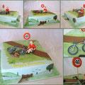 Radler/Biker cakes