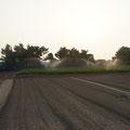 スイカの収穫が終わり、大根の種まきを待っています