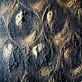 Hendrick Du Bois, Anbetung der Heiligen Drei Könige, Kölner Dom: Vergrößertes Detail der Malschicht während der Festigung/Niederlegung der hochstehenden Malschicht