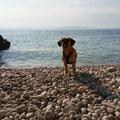 Rabac - Hundebucht