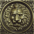 Leo 5x5  Leo 7,5x7,5