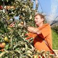 Beni bei der Apfelernte