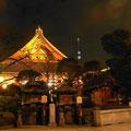 浅草寺本堂からのツリー