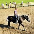 Steinbachgut Flachau - The riding