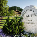 Steinbachgut Flachau - Paardenboerderij