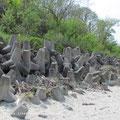 Küstenschutz oder Panzersperren