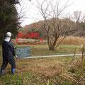 作業後 谷戸下流側を見る 倒木が一部残っている