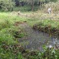 下流側作業後の様子、湛水地(池)ができている
