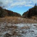 2014年2月5日 前日に降雪