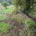 写真2 2番湿地に新たな流れ