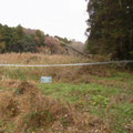 作業前 上流に数本の倒木が見える