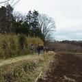 写真3 東の畑地