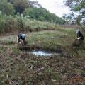 写真4 谷戸内止水地整備