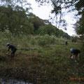 写真3 谷戸内草刈り作業中