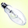 Metall Halogen Lampe für das Wachstum und Mutterpflanzen
