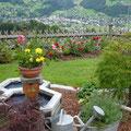 Der Garten und mehr...