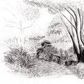 Intimité à l'ombre d'un arbre - Jardin de l'école Du Breuil - Graphite