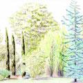 Jardin privé - Fontenay sous bois - Crayons de couleur