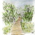 Cheminement dans un marécage - Corse - Crayons auarellables