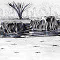 Chaumont sur Loire - Jardin japonais - Encre et graphite