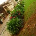 Recuperación, rehabilitación y Diseño Jardines del Palacio de Soñanes