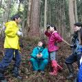 よっちゃん先生の山菜採り講座