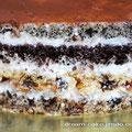 """Торт """"Сказка"""": маковый и шоколадный коржи, коржи с курагой и изюмом, с черносливом и грецким орехом, сметанный крем."""