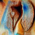 """""""Entdeckung"""" - Öl auf Leinwand 50 x 50 cm, 2014"""