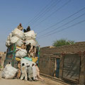 von hand werden riesige säcke auf den lastwagen geladen